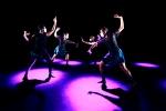 Noir Dance Company pic: Roger Barnes